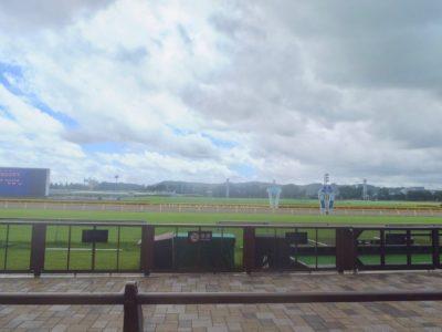 ヴァーミリアン産駒、ドリームメモリー。東京競馬場、ダート1300m。直線、どこまで逃げ残れての距離短縮か(ハイペース特徴に限る?)