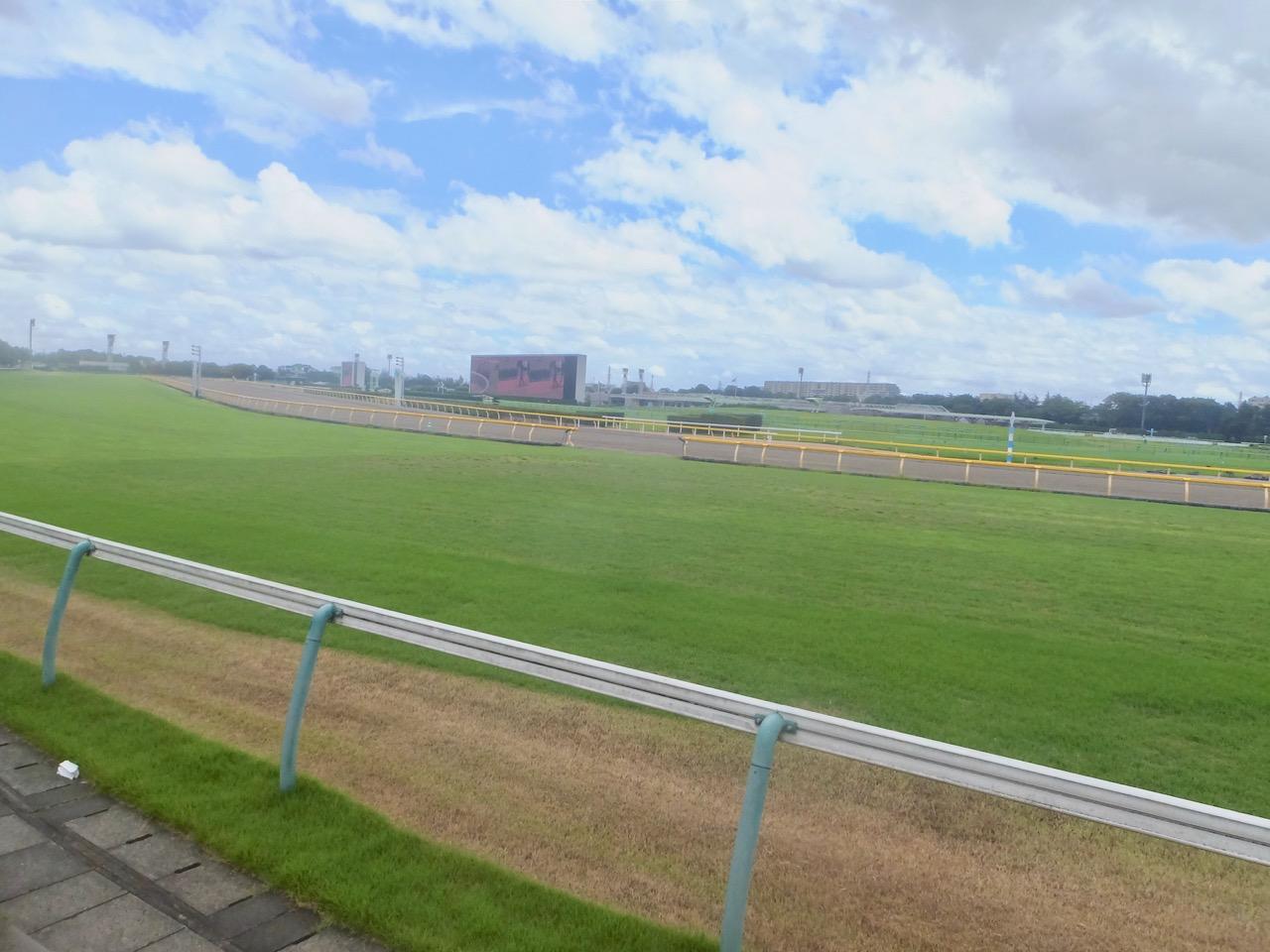 レース 映像 競馬