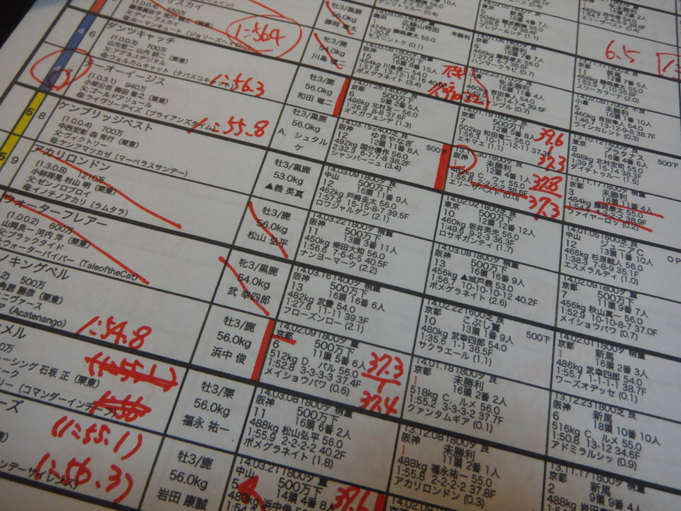 中山競馬場も、阪神競馬場も芝コース、ダートコース、レース開始→結果チェックしてゆきます……。成績はどうなった?