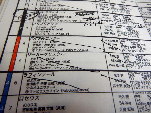 20140824・新潟競馬3R馬柱一部・画像写真