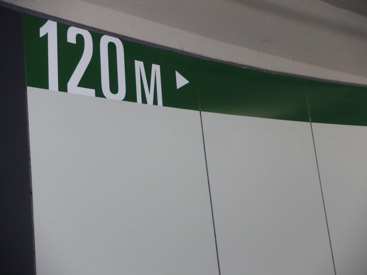 ジャパンカップ2019競馬予想に。過去の結果から1〜3着馬の前走データをレース映像分析【傾向・追い切り・オッズ】