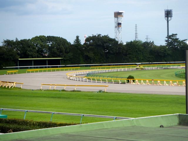 東京競馬場20140824・ダートコース4コーナー・4角付近・画像写真