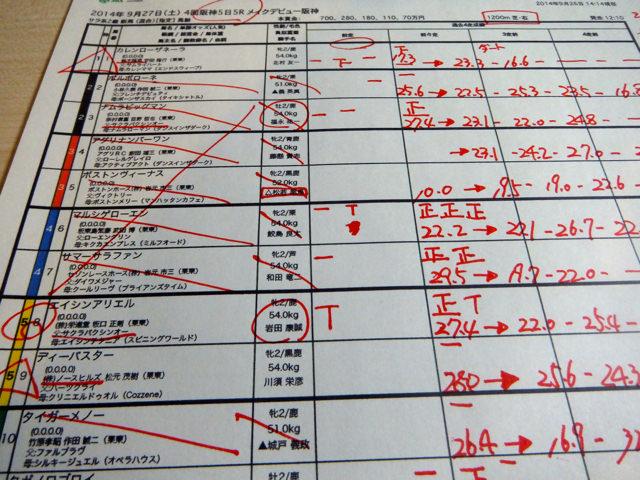 競馬予想と馬券の買い方。阪神5レース、メイクデビュー阪神新馬戦(芝1200m)。本命、サクラバクシンオー産駒エイシンアリエル【複勝重視が基本】