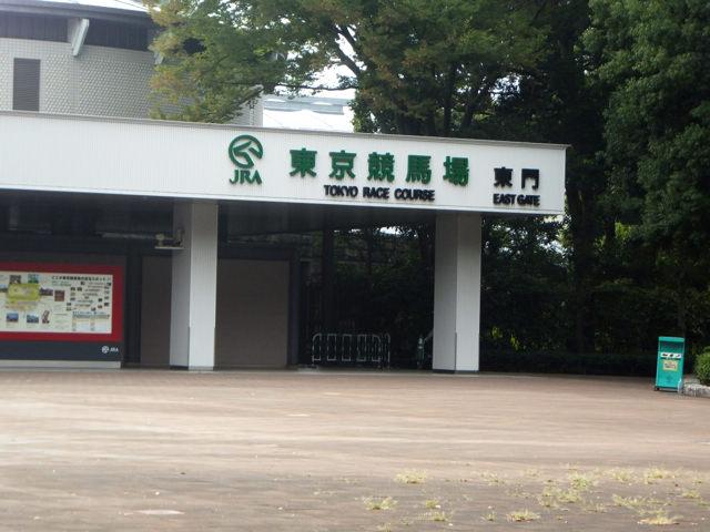 東京競馬場・20140824・東門の看板・画像写真