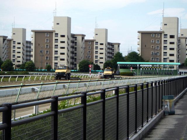 名古屋競馬場20140918・直線をハロー車が通ってゆくところ・画像写真