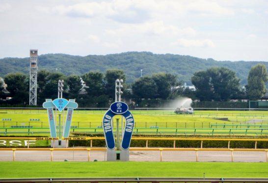 芝でそこそこ走ってたものの、ダートを試して見たのが前走。新潟競馬場・ダート1200m。しかも、不良馬場