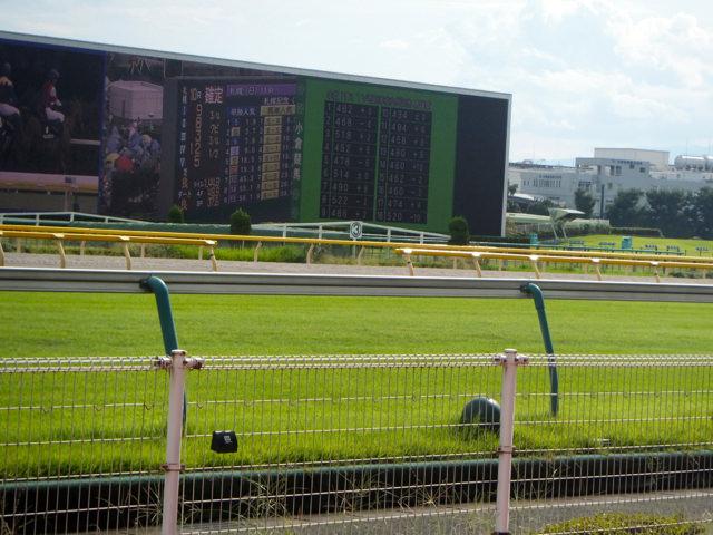 東京競馬場・20140824・芝コースと大型ビジョン・画像写真