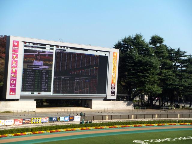 東京競馬場パドック・2014年10月25日・画像写真