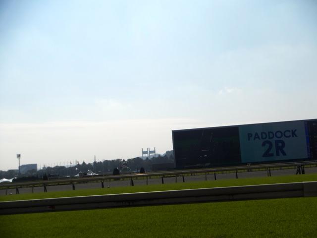 ダイワメジャー産駒、ヴェルメンティーノ。中京競馬場、ダート1800m。前走、同じレースの馬が、2着・3着。人気ない馬が先着した、理由と特徴は?