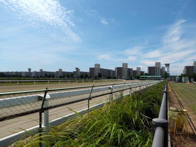 名古屋競馬場・スタートゲートを奥に・ダートコース・画像写真