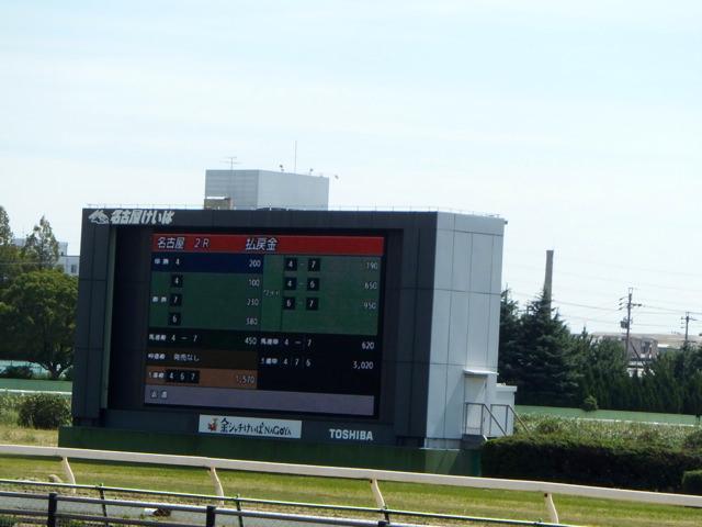 ファルコンステークス2020競馬予想に。過去の結果から1〜3着馬の前走データをレース映像分析【傾向・追い切り・オッズ】
