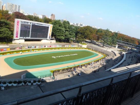 阪神大賞典 競馬予想 過去