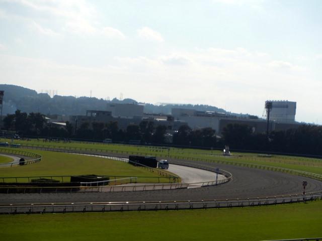 クロフネ産駒、ラクロワ。阪神競馬場、ダート1800m。飛び上がりスタート。コーナーを大外回り。でも直線伸びる、特徴。次走、馬券に