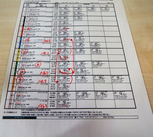 阪神競馬場・2014年12月14日・2レース馬柱一部・画像写真