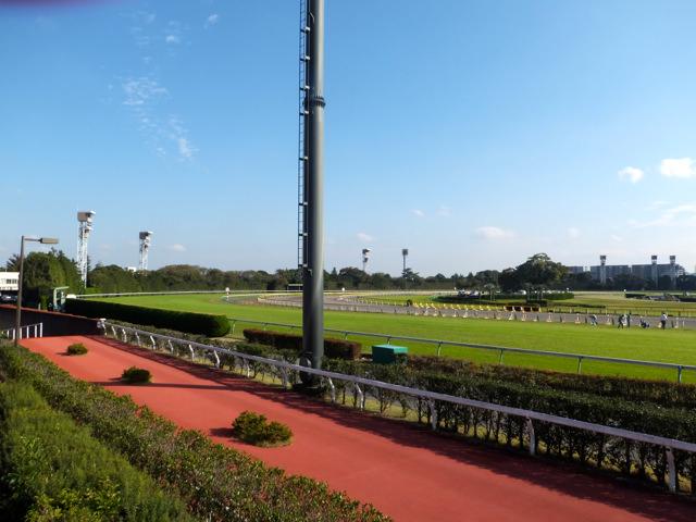 日経賞2020競馬予想に。過去の結果から1〜3着馬の前走データをレース映像分析【傾向・追い切り・オッズ】