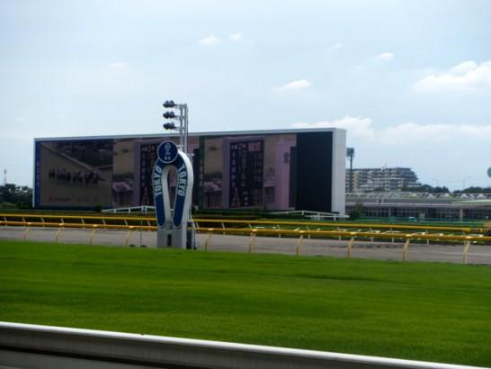 阪神牝馬ステークス 過去データ分析
