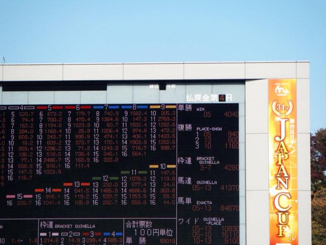 ニュージーランドトロフィー2020競馬予想に。過去の結果から1〜3着馬の前走データをレース映像分析【傾向・追い切り・オッズ】