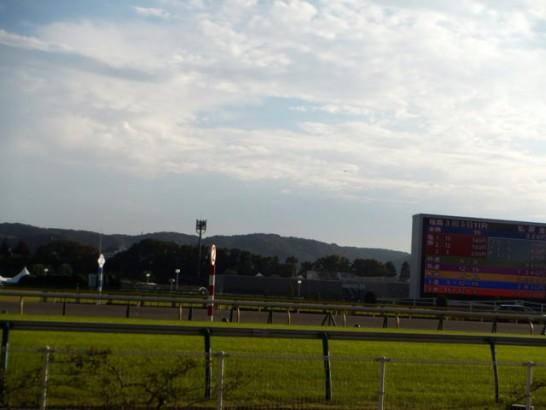 阪神牝馬ステークス 競馬予想 過去