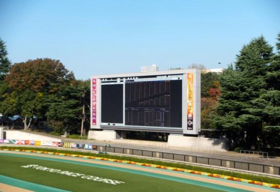 阪神ジュベナイルフィリーズ 過去データ分析