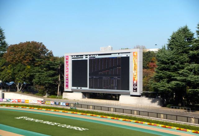 競馬予想ではパドックよりレース映像・動画を重要視する。馬体の最新情報を見極める、攻略することに意味がないのではなく、競走馬が仕事をするのはレースだから