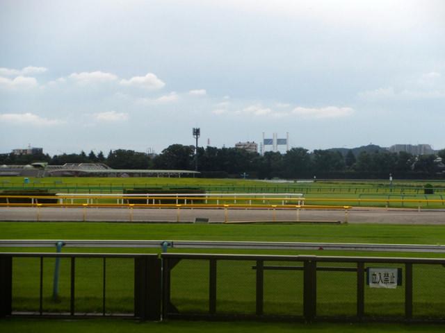 単勝万馬券の馬に競馬で乗って、馬券にからみますねと伝えた競馬記者。武士沢友治騎手「そんなのいらないから、1倍台の人気馬で重賞を勝ちたい」