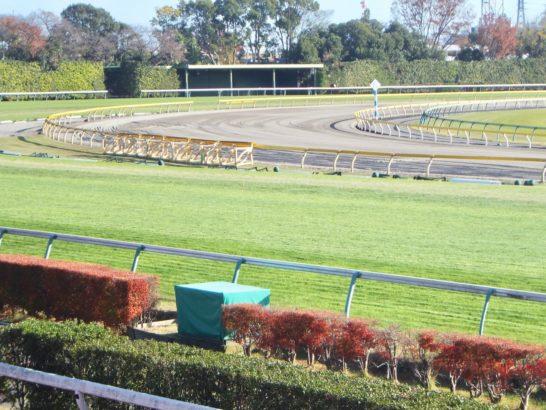 競馬最強の法則、2015年7月号に武士沢友治騎手のことが掲載されていました