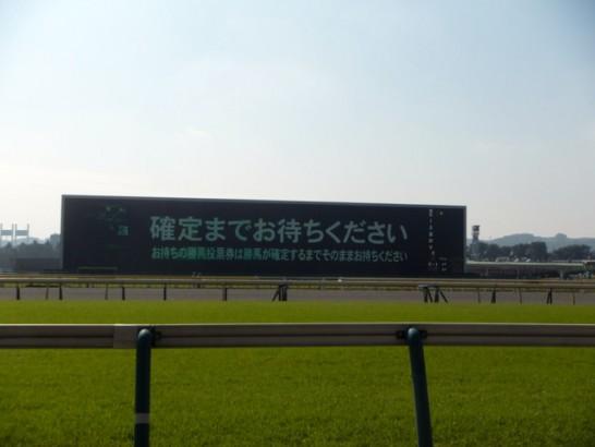 福島牝馬ステークス 競馬予想 過去