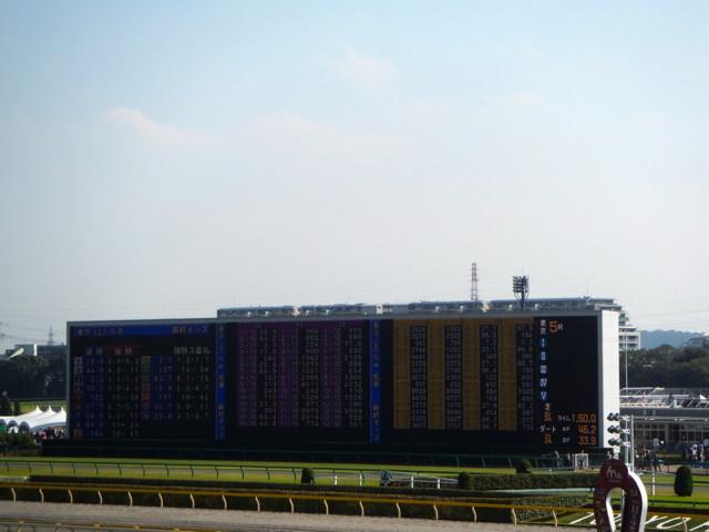 皐月賞2020競馬予想に。過去の結果から1〜3着馬の前走データをレース映像分析【傾向・追い切り・オッズ】