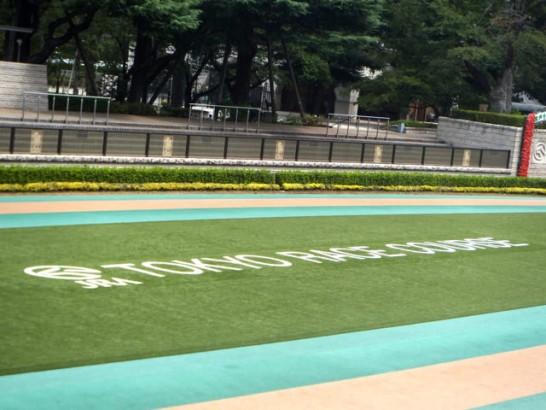 武蔵野ステークス 競馬予想 過去