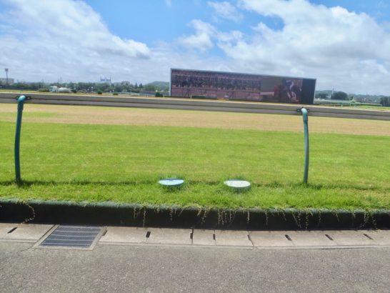 穴馬競馬予想。選び方に共通点あり? 2014年のヴィクトリアマイルを見て、0.3秒差の着差が変わる事象の探し方を発見?