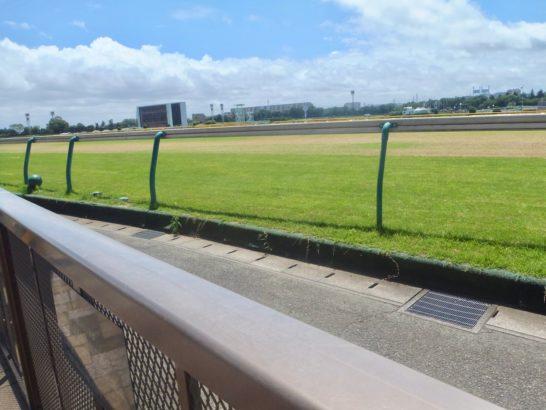 更に穴馬競馬予想じゃ。穴馬券の共通点じゃ。ケイアイエレガントの福島牝馬S。ミナレットの福島牝馬S。あれっ?