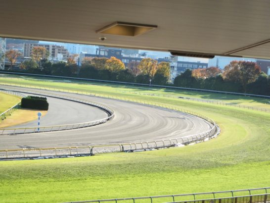 一口馬主は赤字や大損ひっかかる。気になるのは乗馬。レース映像を競馬予想のメインファクターにしてから、騎手の動作をよく見るようになったので