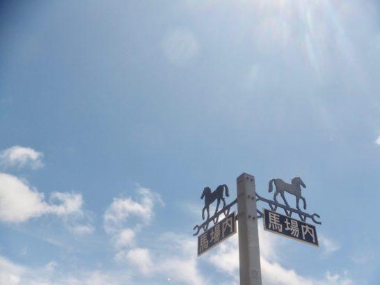 馬のしっぽに赤いリボンは蹴り癖のサイン。一方、イギリスではテールライトを装着する馬がいるのだそう【競馬・馬券】