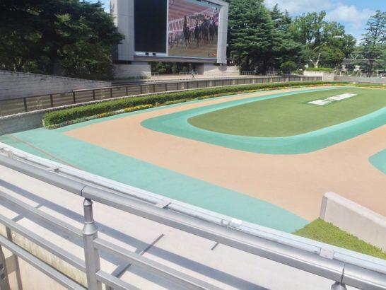 競馬の距離適性は1600mのレース、マイル戦に見ると角居勝彦調教師。脚質・ペース・ラップタイムから延長・短縮の特徴、傾向を見るコツ