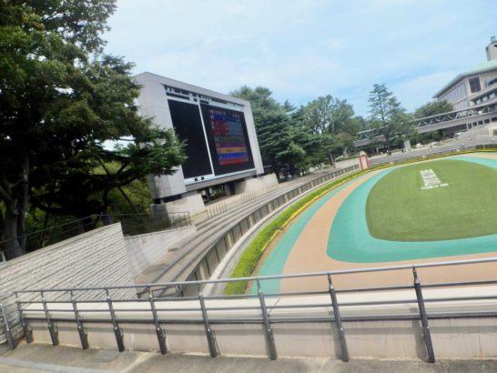 阪神競馬場・芝1600m。阪神ジュベナイルフィリーズ。桜花賞と同じ舞台で大事なレースと角居調教師。コースの傾向・特徴を見てみる