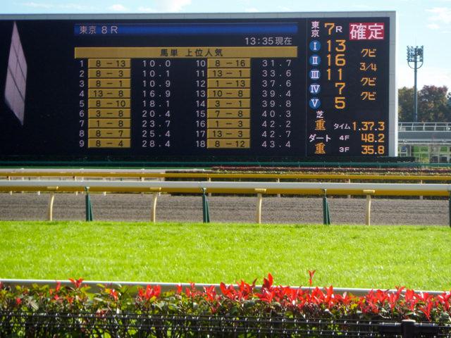 馬の耳の動きを、競馬のレース映像分析や見方に使えないか考えたけど…。耳を絞る、伏せる、念仏、馬耳東風…