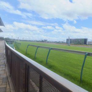 競馬のレースで騎手が、ステッキ(鞭)を直線で入れなかった勝ち馬は馬券になるという、東スポの記事に「ホンマカイナ」