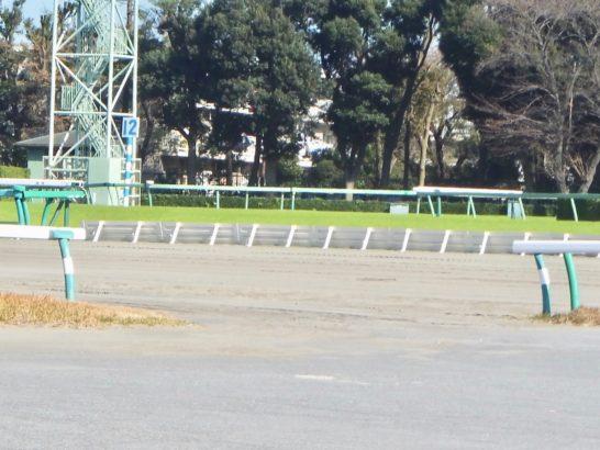 競馬場の馬場には「行き」と「帰り」がある。稍重・重・不良
