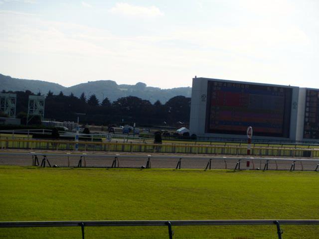 中央競馬(JRA)の年間レース数は約3400レース。G1あり、未勝利ありなスケジュール