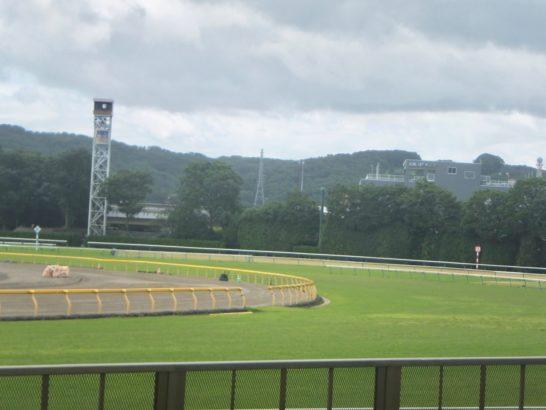 中央競馬、JRAの年間レース数は開催日程・種類スケジュールあって約3400レース