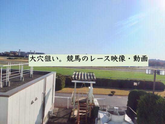 大穴狙い。競馬のレース映像・動画