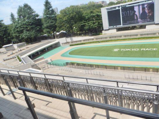 競馬予想のパドックは、ポイントや情報をレース映像・動画に比べて公平に見られると思う。馬体、首の動き、調子、発汗…