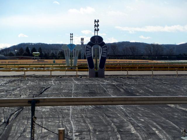 エプソムカップ2020競馬予想に。過去の結果から1〜3着馬の前走データをレース映像分析【傾向・追い切り・オッズ】