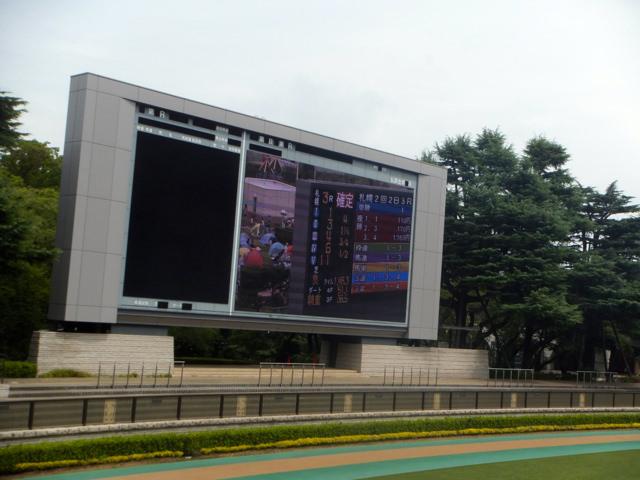 天皇賞秋2019競馬予想に。過去の結果から1〜3着馬の前走データをレース映像分析【傾向・追い切り・オッズ】