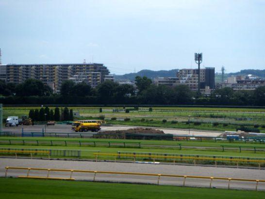 レースで走り競馬をしている馬をどう見るのか、レース映像の見方の競馬予想本、方法を分析してる人は少ない?
