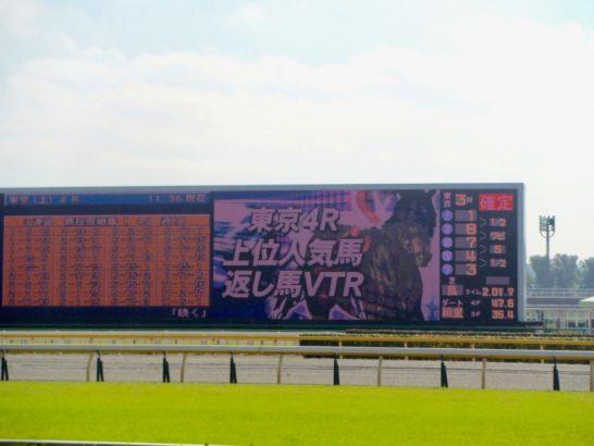 新馬戦の競馬予想に調教、追い切りの数字を使うコツ、ポイント【傾向、特徴】