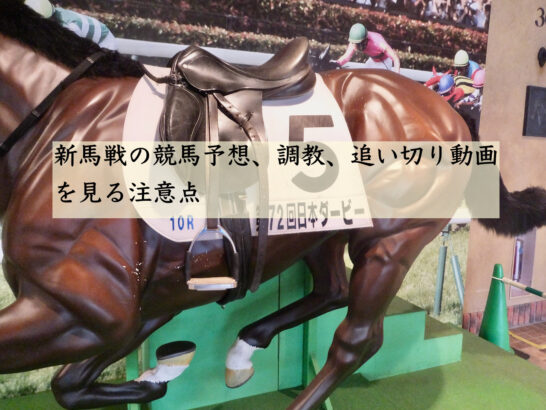新馬戦の競馬予想、調教、追い切り動画を見る注意点