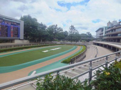JRA・中央競馬、全周パトロールビデオを全レース公開。レース映像・動画を見て競馬予想、馬券検討する方データ増える。地方競馬も続け