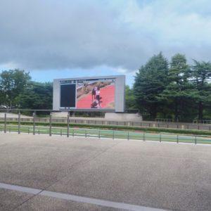 JRAレーシングビュアーの動画プレイヤーに、スロー再生機能追加。競馬予想に役立つ。レース映像・パドックをじっくり見られる