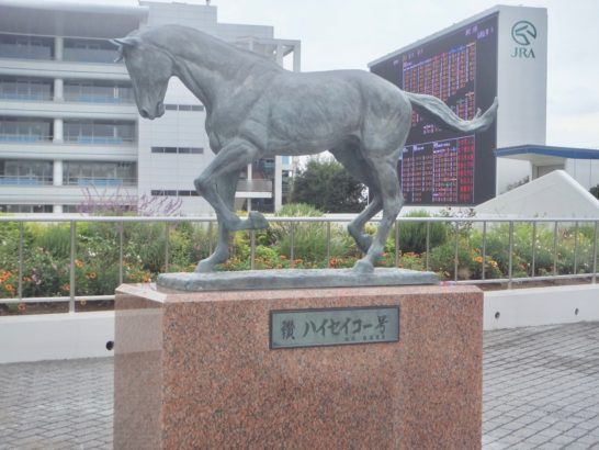 ダービー馬、オークス馬はどの競馬場の新馬戦から出てくるか? その後の評価面